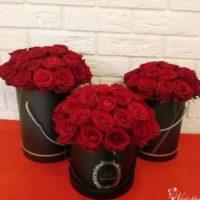 flowerbox czerwone róze trojmisto banino